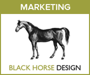 Black Horse Design Marketing (North Wales Horse)