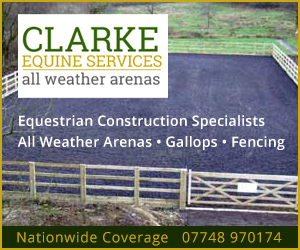 Clarke Equine Services 2020 (North Wales Horse)