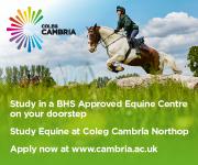Coleg Cambria 10 (North Wales Horse)