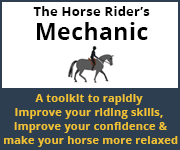 The Horse Rider's Mechanic 01 (North Wales Horse)