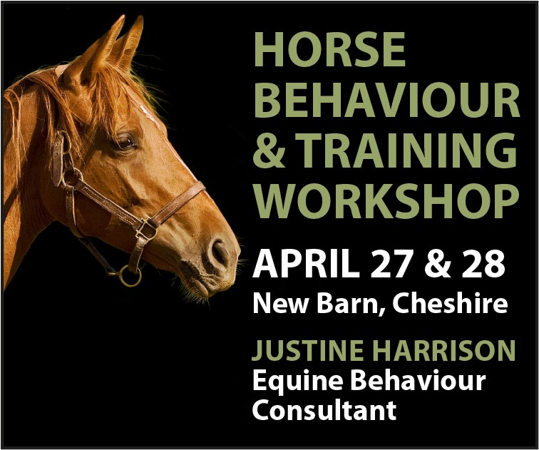 Justine Harrison Workshop April 2019 (North Wales Horse)