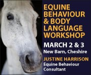 Justine Harrison Workshop March 2019 (North Wales Horse)