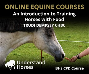 UH - An Introduction To Training Horses With Food (North Wales Horse)