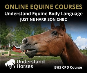UH - Understand Equine Body Language (North Wales Horse)